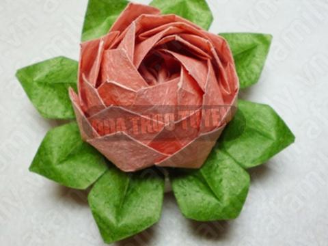 Gấp hoa sen giấy thật đẹp mà đơn giản