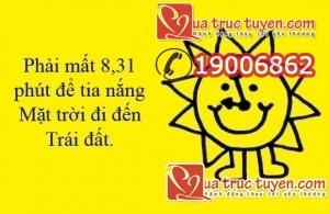 5156e3c3-5ea4-4494-9f7d-8374a1e03fe2
