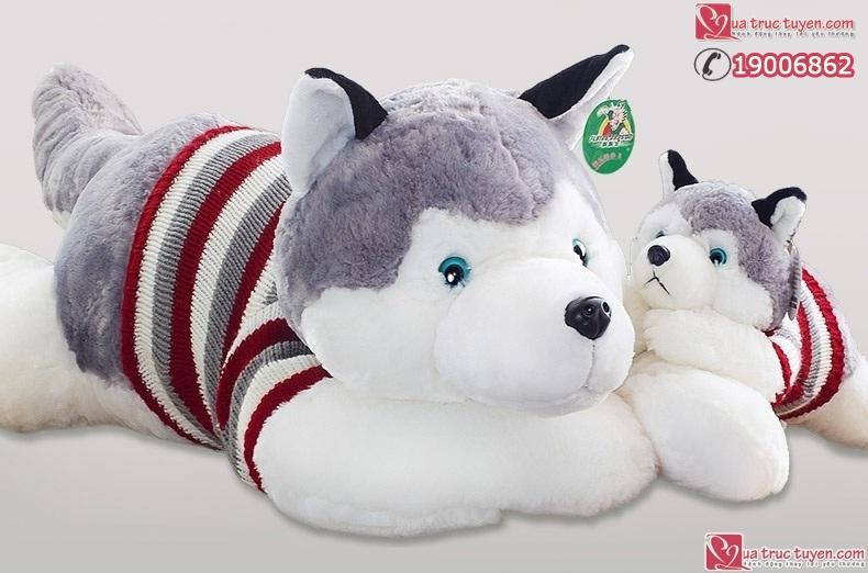 cho-bong-husky