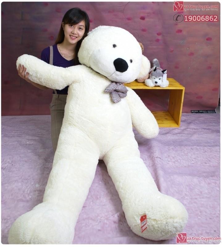 Gấu Teddy Boyds khổng lồ dễ thương