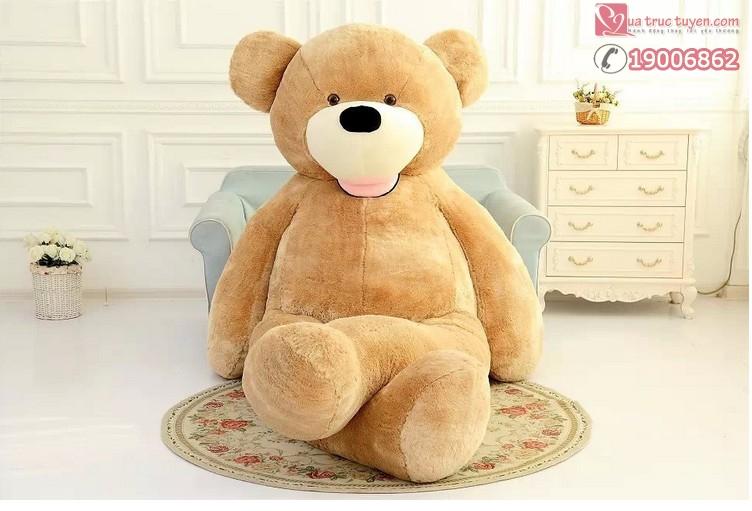 gấu khổng lồ costco-6