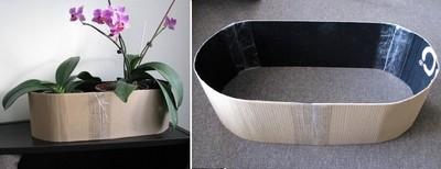Cách cắm hoa lan mộc mạc trang trí nhà mình 7