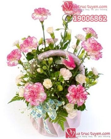hoa cho cung94