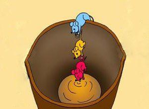 Câu chuyện Tuần 59: Câu chuyện về 3 con chuột và bài học Đoàn Kết