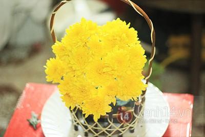 Xem nhanh cách cắm hoa cúc đơn giản 7