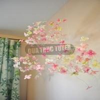 Cầu hoa treo tường