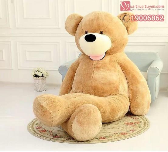 gấu khổng lồ costco-4