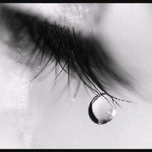 Quà tặng cuộc sống] Vì sao phụ nữ khóc? ⋆ Cộng đồng giải trí việt